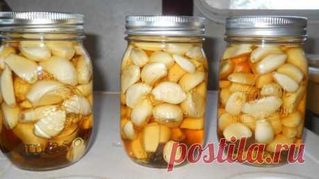 Яблочный уксус, мед и чеснок: рецепт волшебной настойки, польза и вред