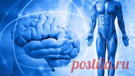 Как психологические факторы провоцируют болезни физического тела | Психология счастья | Яндекс Дзен