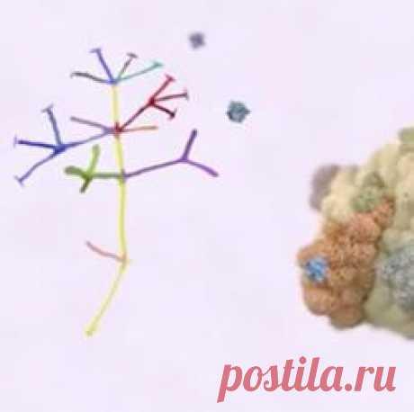 Ученые нашли способ заставить иммунную систему самостоятельно бороться с раком - vala-valia1955@inbox.ru - Почта Mail.Ru