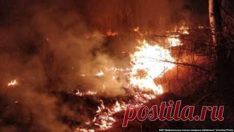 Глава Якутии из-за лесных пожаров ввёл режим ЧС