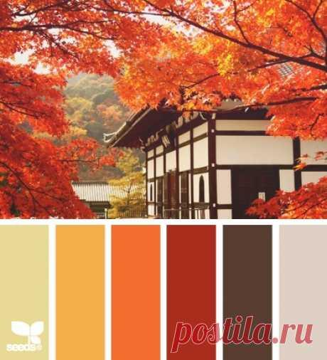 Осеннее сочетание цветов