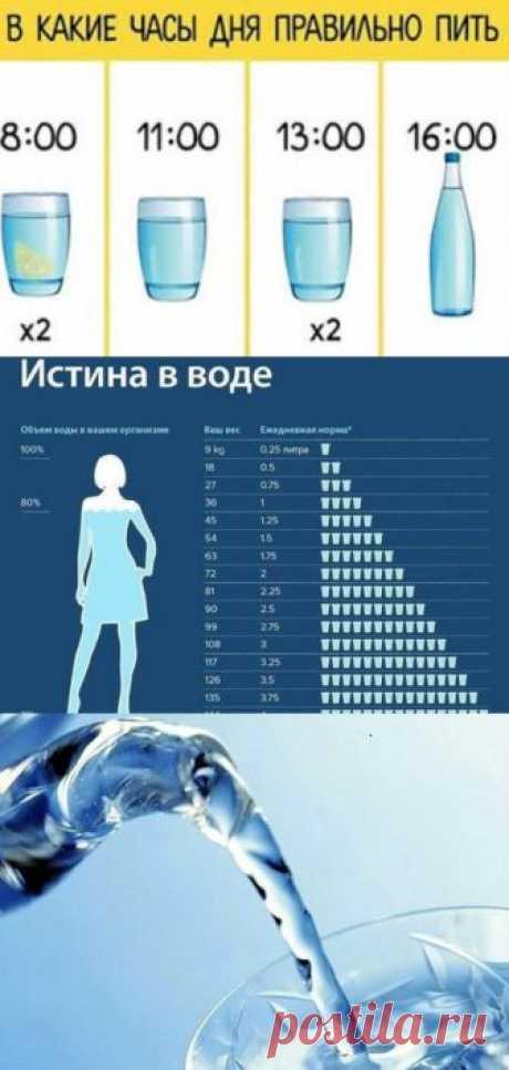 В какие часы дня следует правильно пить воду - interesno.win