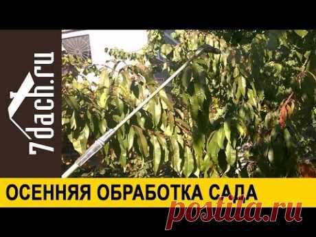 🍂 Защищаем сад от вредителей. Осеннее опрыскивание: чем, как и когда - 7 дач