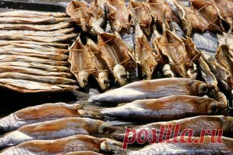 Как солить рыбу, как вялить рыбу, как коптить рыбу, как мариновать рыбу: Рецепты заготовки рыбы