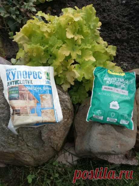Купорос медный и купорос железный- в чем сходство и отличия применения в саду | Цветочная няша | Яндекс Дзен