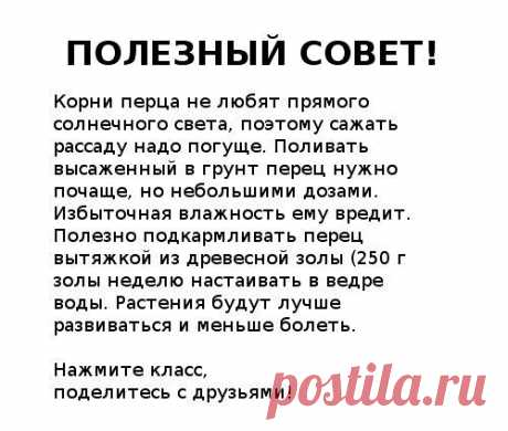 Gallery.ru / Фото #53 - Полезные советы - Engelis