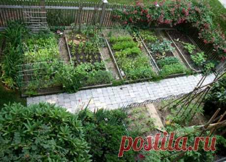 Интересные идеи дизайна огорода - Огород, сад, балкон - медиаплатформа МирТесен