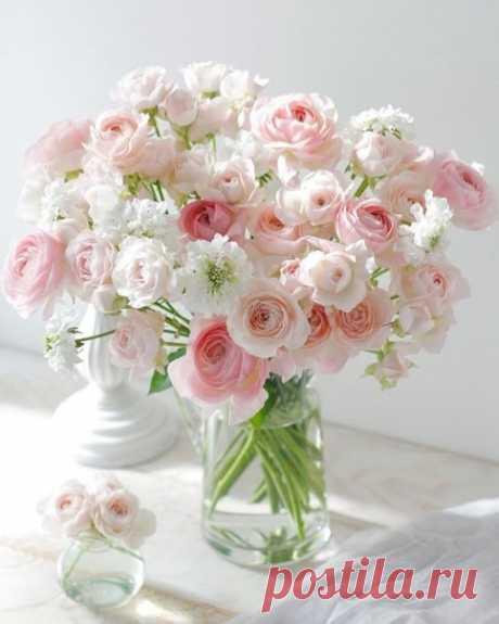 Цветочной нежности вам 🌸