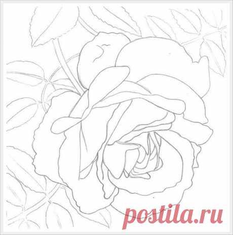 Учимся рисовать розу акварелью — Сделай сам, идеи для творчества - DIY Ideas