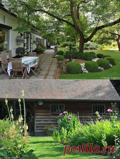 Симпатичный бельгийский сад, которому уже 60 лет   Сады и цветы    Яндекс Дзен