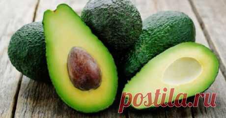Полезные свойства авокадо  Фото: LechiGastrit.ru Авокадо (или Персея американская) - это уникальный фрукт, он отличается от большинства высоким содержанием здоровых жиров. Мн... #медицинское_обозрение #медицина #здоровье #новости