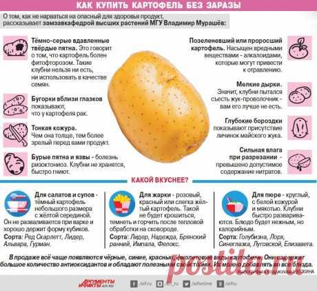 Как купить картофель без заразы