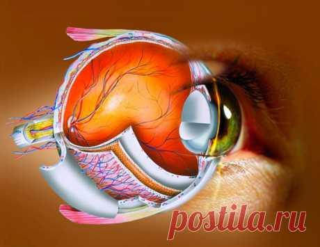 Как сохранить хорошее зрение - Все обо Всем