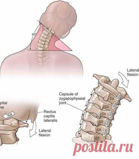 Упражнения, которые заставят вас забыть о боли в области шеи Если вам приходится в течение целого рабочего дня просиживать, склонив голову над бумагами, то со временем у вас, конечно, возникают неприятные ощущения в области верхней части спины и шеи. Причиной т...