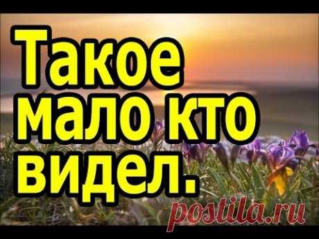 Los lugares poco conocidos de la Crimea, obligatorio a la visita