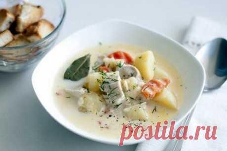 Рецепты супа с плавленным сыром   ШефМаркет   Яндекс Дзен