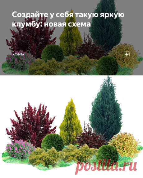 Создайте у себя такую яркую клумбу: новая схема | КЛУМБА | Яндекс Дзен