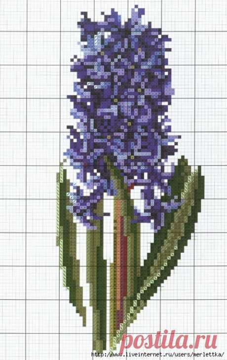 Вышитые цветы, Гиацинт крестом, схемы вышивания