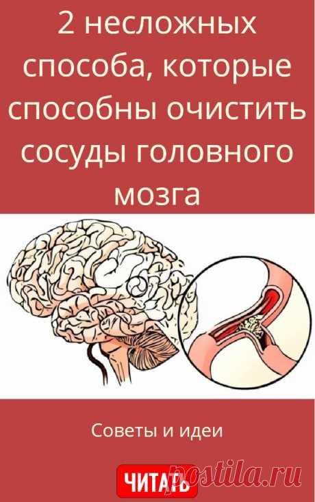 2 несложных способа, которые способны очистить сосуды головного мозга