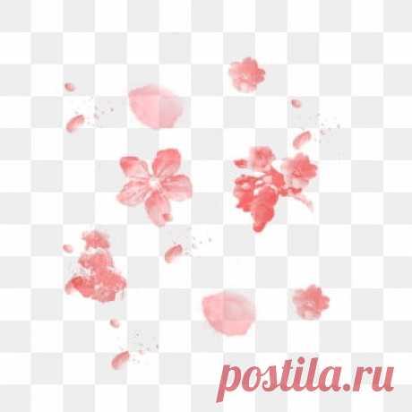 лепесток PNG образ | Векторы и PSD-файлы | Бесплатная загрузка на Pngtree