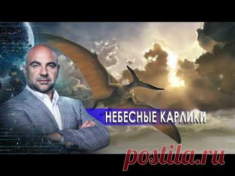 """Небесные карлики. «Как устроен мир"""" с Тимофеем Баженовым (23.10.20)."""