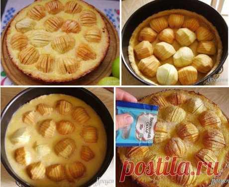 """Яблочный пирог """" Обалденный """" Яблочный пирог """" Обалденный """" Ингредиенты : Для теста : мука - 220 г сливочное масло - 250 г сахар - 50 г яйцо - 1 шт. Для начинки : яблоки - 1 кг сахар - 100 г яйца - 3 шт. сметана - 5 ст.лож. лимонный сок - 1 ст.лож. цедра 1 лимона ванильный сахар - 10 г Для теста соедините сухие ингреди"""