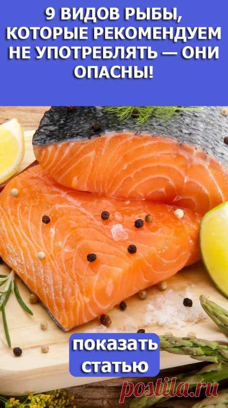 Смотрите! 9 видов рыбы которые рекомендуем не употреблять они опасны