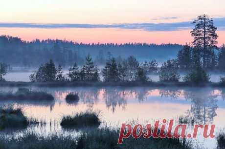 Рассвет на Лососинском озере. Автор фото — Николай Раппу, участник фотоконкурса «Незабываемая Карелия»: vk.com/album-24565142_232106582