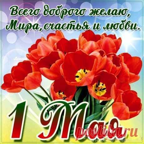 Открытка - Букет из красных тюльпанов на 1 Мая