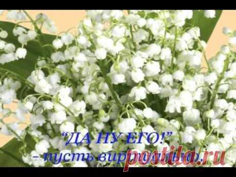 С Днем рождения подруга! - YouTube