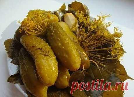 Огурцы соленные с горчицей