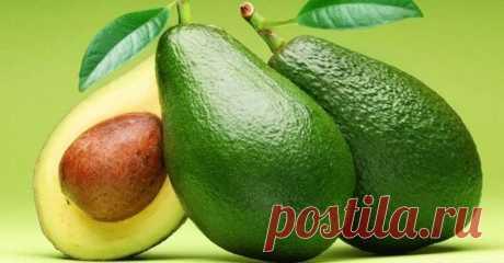 Уникальные рецепты от холестерина, псориаза, паразитов, вшей, морщин, перхоти, выпадения волос! 9 самых лучших рецептов на основе целебных свойств авокадо!Авокадо — это плод, богатый белками, витаминами и минералами. Он широко используется в различных кулинарных блюдах и лекарственных рецепт