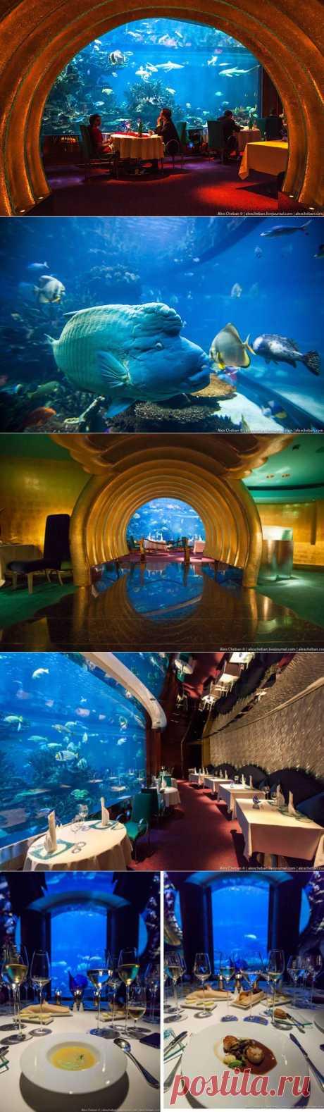 Ресторан под водой / Туристический спутник