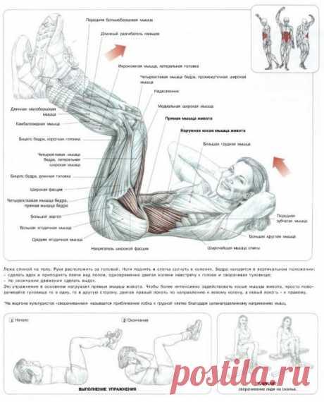 ПРЕСС. Подъем туловища из положения лежа со скручиванием и подтягиванием колена к груди. Главная цель этого упражнения – интенсивная нагрузка на весь брюшной пресс, особенно на верхнюю половину. Несмотря на то, что такое упражнение является простым, эффективность от него достаточно большая.