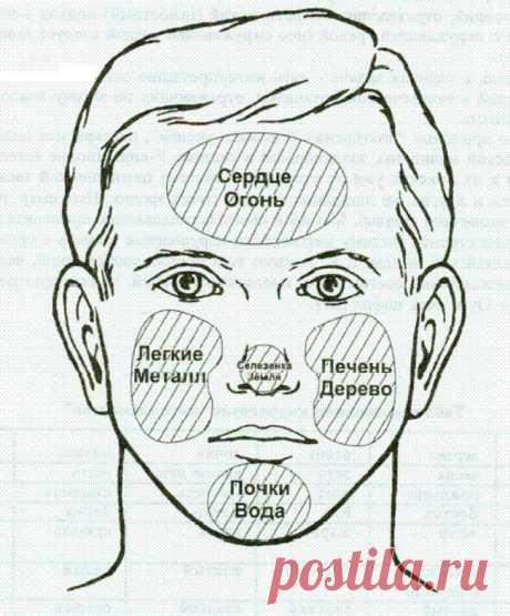 Китайская физиогномика: диагностика судьбы и здоровья