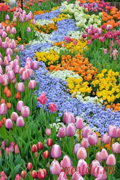 Ծաղիկներ, Գարուն ...ու Սեր💔 Ծաղիկնե՜ր, Ծաղիկնե՜ր  Ծփում է Սեւանը,  Կանչում է Սեւանը,  Ծով ալիքների մէջ,  Ժպտում է Սեւանը։ Ծաղիկնե՜ր, ծաղիկներ,  Անթառամ ծաղիկներ,Դուք սիրոյ կարօտի  Անմոռաց վկաներ։ Ծաղիկնե՜ր, ծաղիկներ,  Անթառամ ծաղիկներ,  Երազող ծաղիկներ  Իմ սիրոյ ծաղիկներ։ Մեր սէրը երազ էր,  Արթնացայ էլ չկար  Ես շատ արտասուեցի  Բայց աւաղ ճար չկար։ Ծաղիկնե՜ր, ծաղիկներ,... Ես լուռ փնտռում եմ քեզ,  Փնտռում տենչում եմ քեզ,  Ներիր ինձ սիրելիս,  Որ դեռ սիրում եմ քեզ...։
