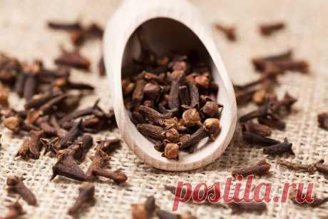 Названа польза сушеной гвоздики для работы пищеварения — Ferra.ru