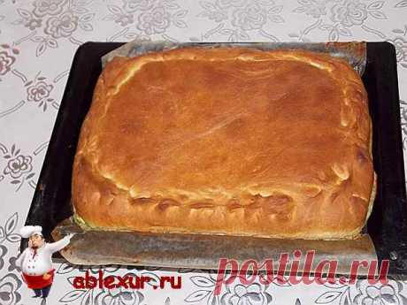 Green onions and egg pie. The recipe with photos