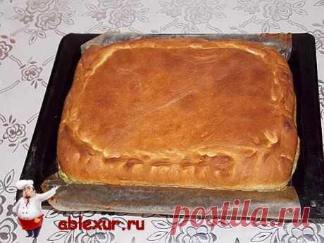 Пирог с зеленым луком и яйцом: рецепт с фотографиями