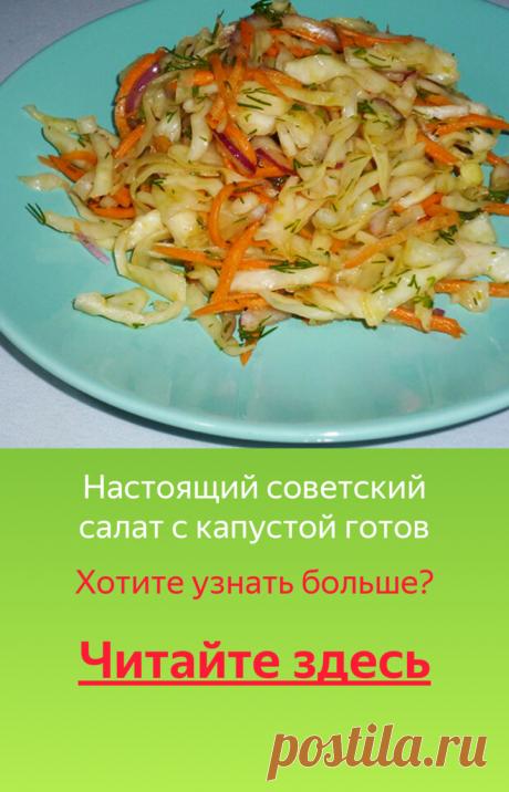 Капустный салат по советским стандартам   Poperchi.Ru   Яндекс Дзен