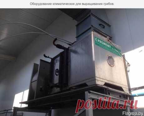 оборудование по производству шампиньонов - Беларусь , Брестская обл. , Брест