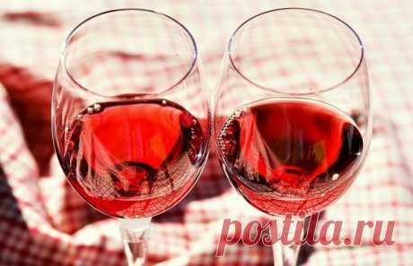 Красное вино полезно для кишечника — Интересные факты
