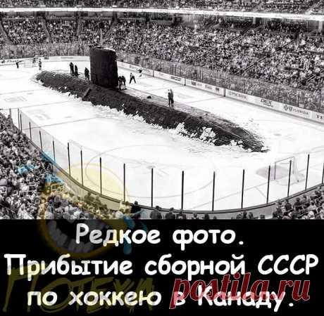 Приколы № 67.   Потеха   Яндекс Дзен