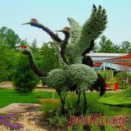 Потрясающие скульптуры из цветов