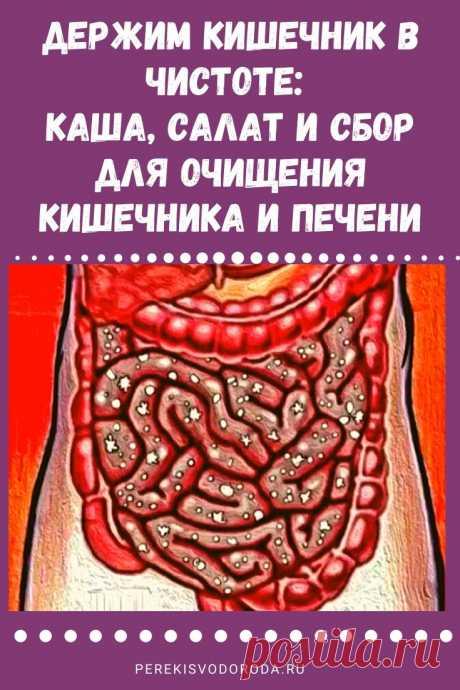 Держим кишечник в чистоте: каша, салат и сбор для очищения кишечника и печени