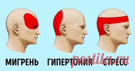 Как избавится от головной боли без таблеток за 5 минут Когда у вас раскалывается голова, а нужной таблетки нет под рукой, ситуация кажется безвыходной. Но это не так. Существует научный