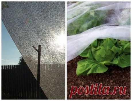 Чем притенить теплицу из поликарбоната от солнца: укрывной материал и прочие способы защиты