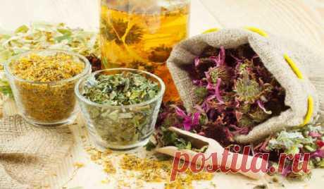 Лекарственные растения - помощники при лечении отеков (Это полезно знать)   Для устранения отеков в первую очередь назначаются растения, оказывающие мочегонное действие, но, конечно же, с учетом заболеваний, вызвавших отек. Обычно это растения, которые:-…