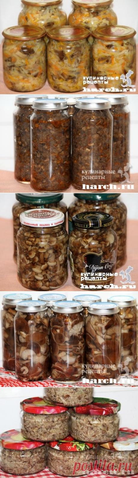Заготовки из грибов | Фоторецепты на Харч.ру