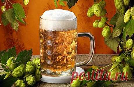 Приготовление домашнего пива. | Наш дом